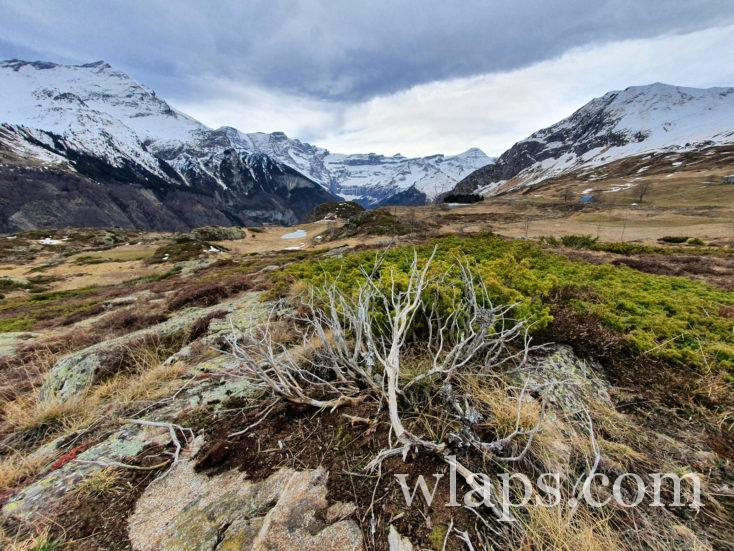paysage sauvage du Plateau de Saugué