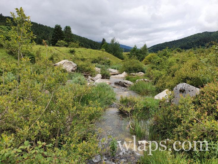 ruisseau au bord du lac de Payolle