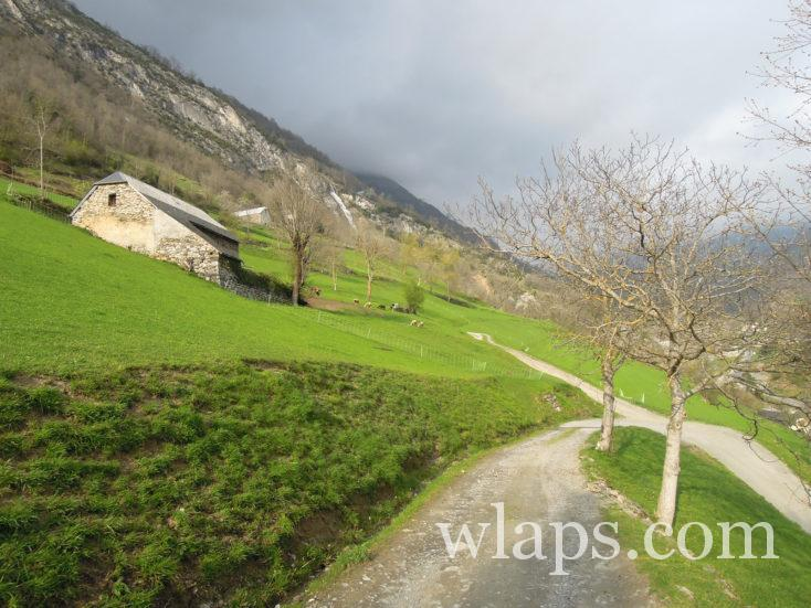 chemin depuis le Château de Luz-Saint-Sauveur