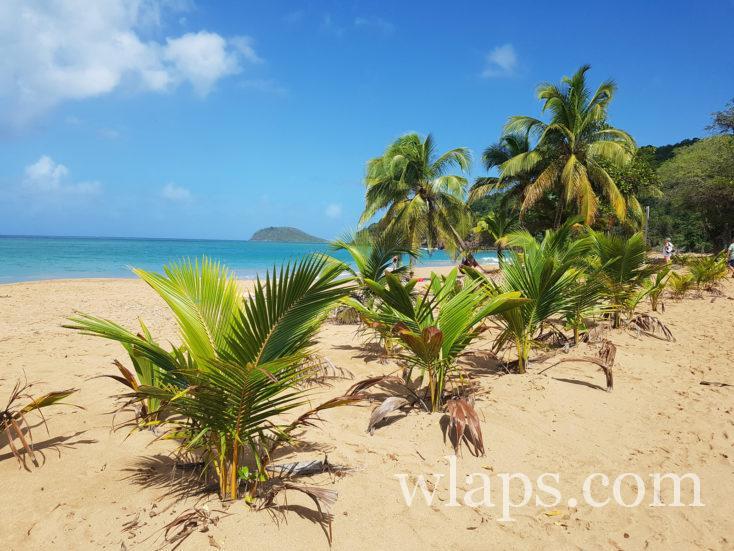 belle météo à la plage de la Perle en décembre en Guadeloupe