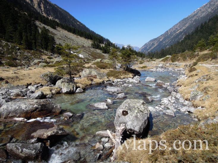 ruisseau au Lac d'Estom