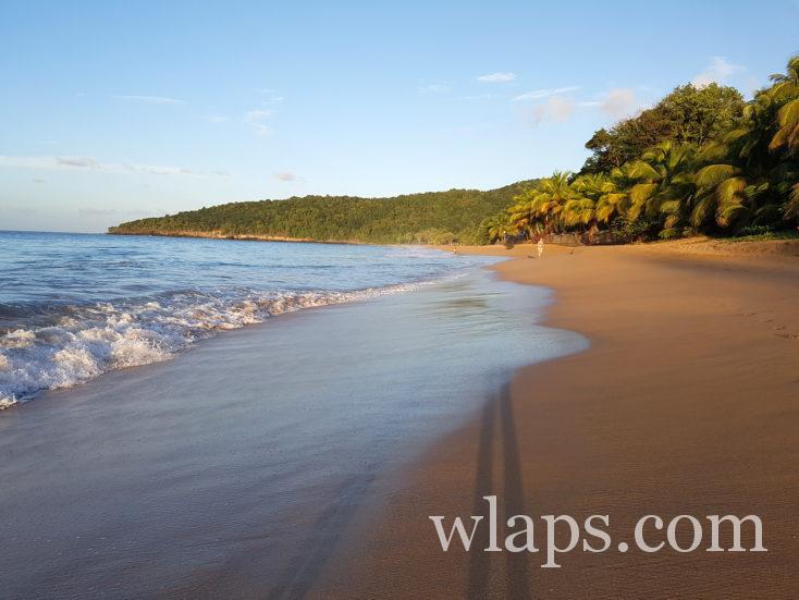 plage de la Perle en Guadeloupe au coucher de soleil