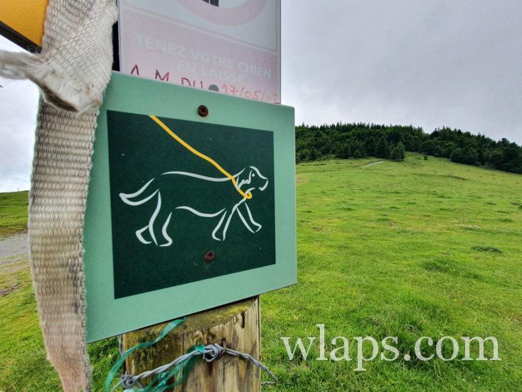 panneau chien en laisse au Col d'Aspin