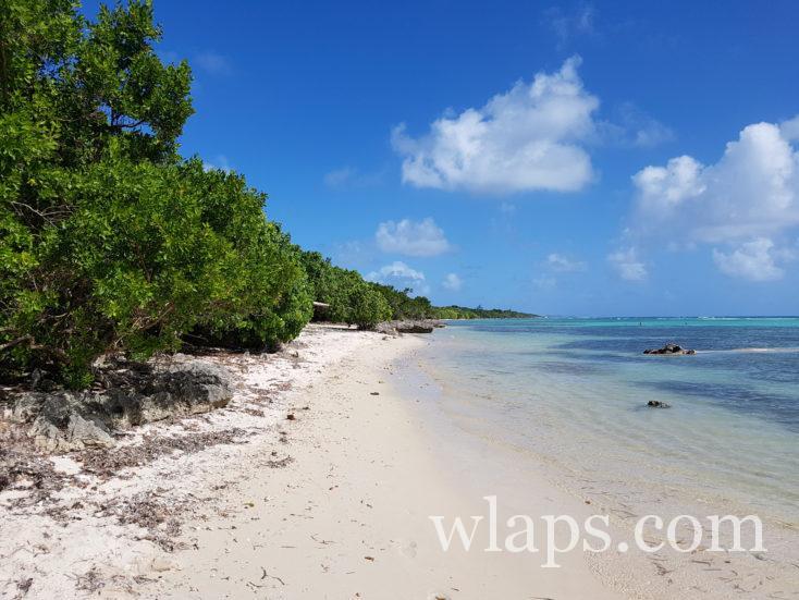 l'Anse du Mancenillier en Grande-Terre en janvier