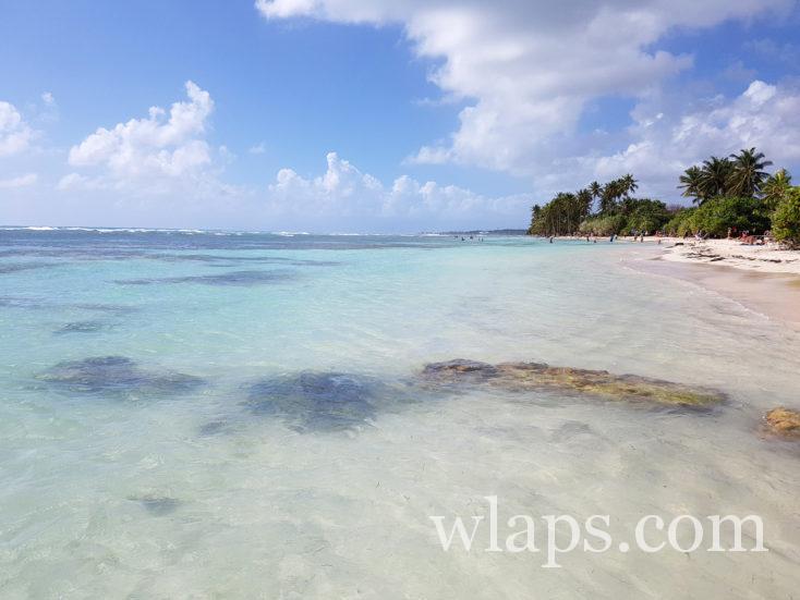 la plage de Bois Jolan en janvier en Guadeloupe
