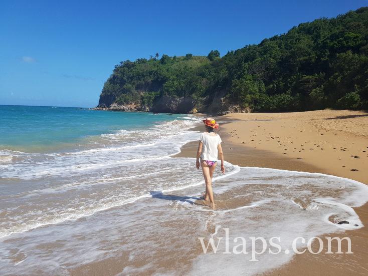 le long de la Mer des Caraïbes en Guadeloupe