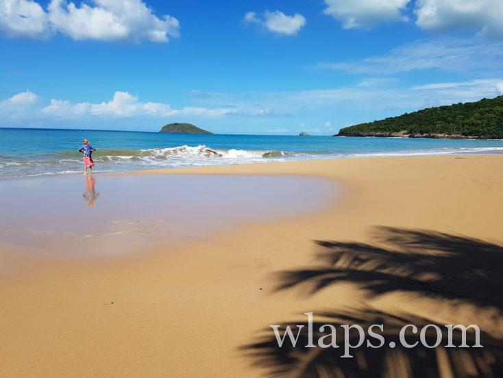janvier à la plage de la Perle en Guadeloupe