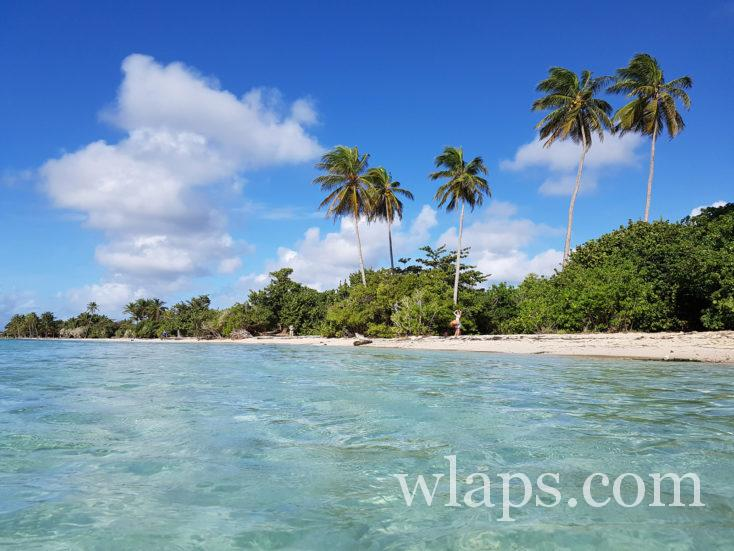 aller en janvier en Guadeloupe à la plage de Bois Jolan