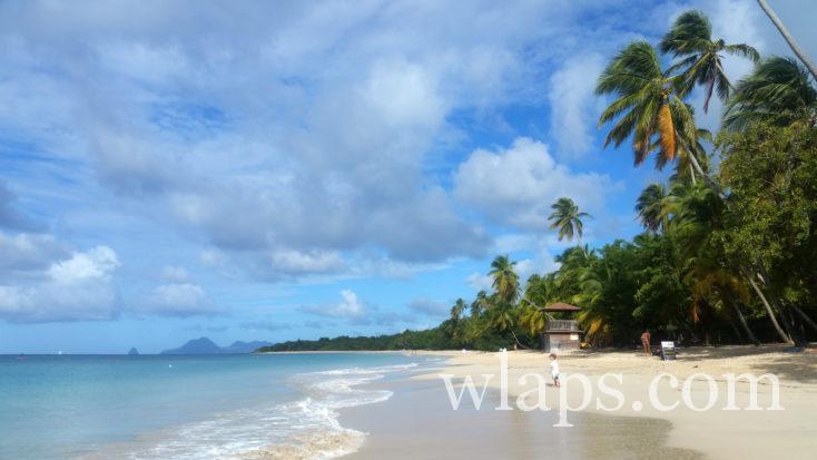plage de Grande Anse des Salines en Martinique