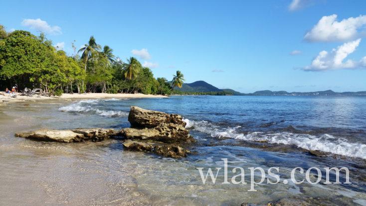 plage de l'Anse Désert en Martinique