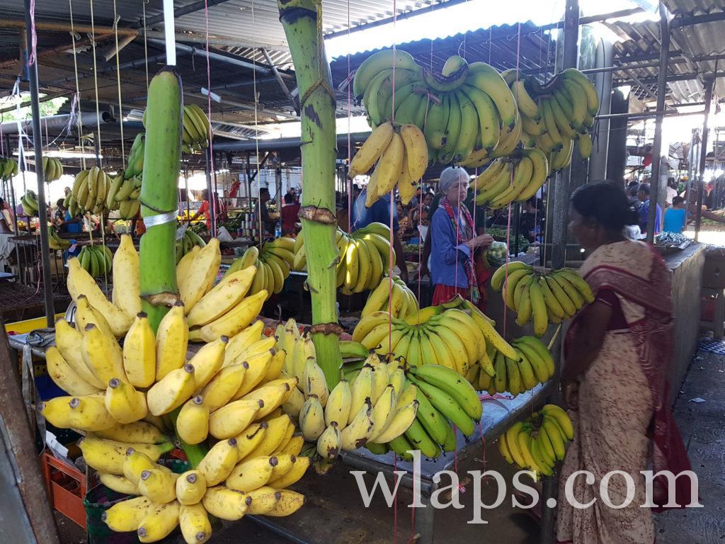 régime de bananes du marché de goodlands à l'ile maurice